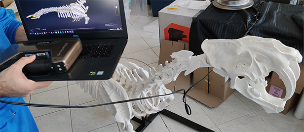 Real sculpture and 3D data display
